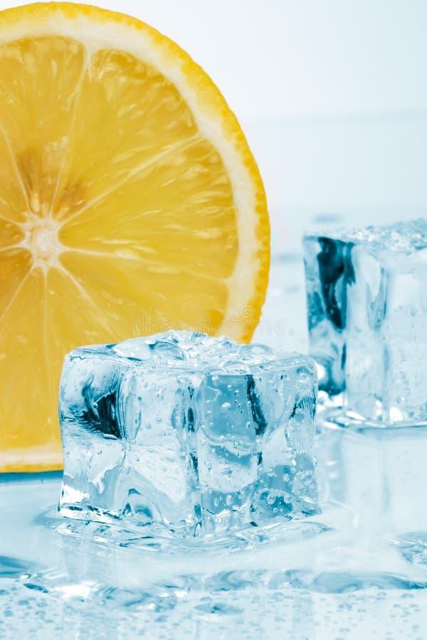 Slice of lemon and ice cubes stock image