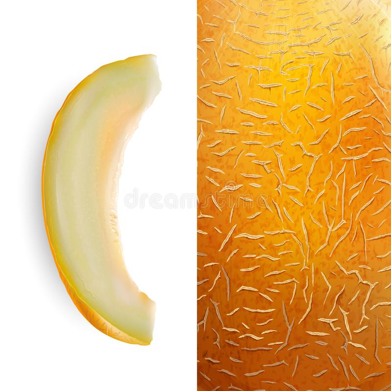 Slice of melon illustration. Slice of melon on white background and texture, illustration stock illustration
