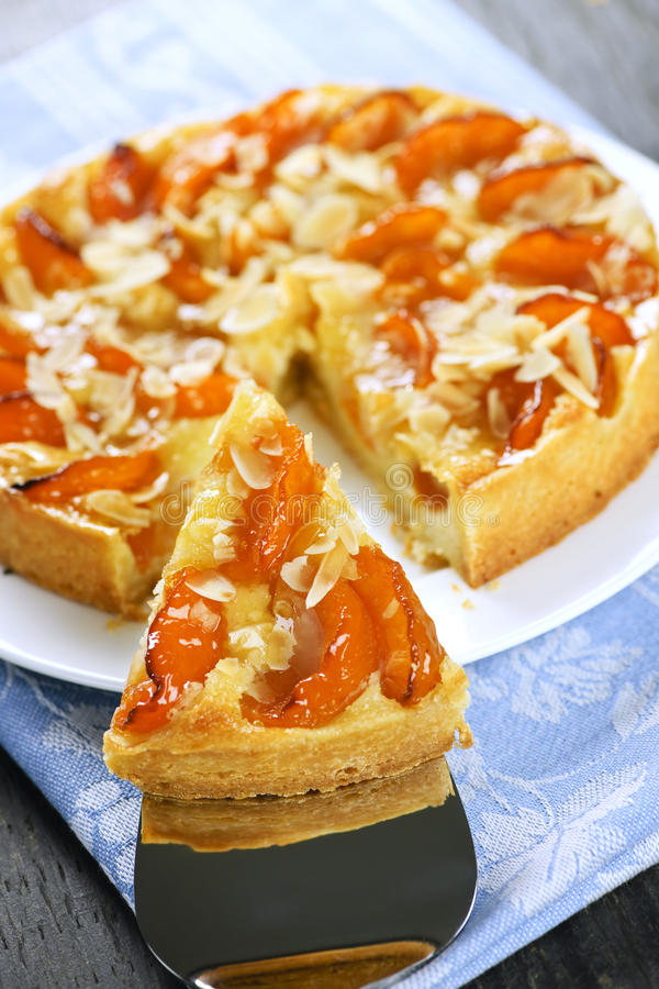 Free Slice Of Apricot And Almond Pie Stock Photos - 13692183