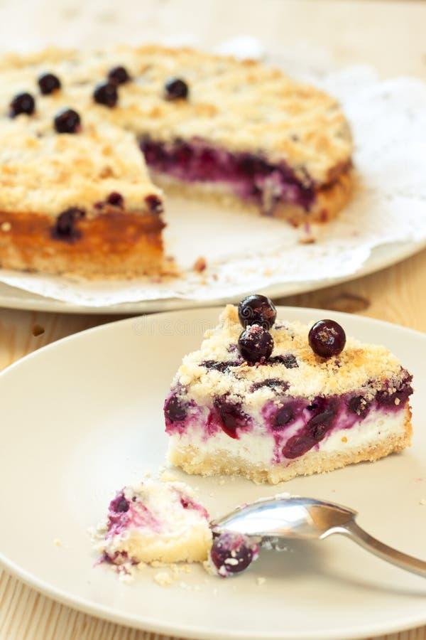 Free Slice Of Black Currant Pie Stock Photos - 16084923