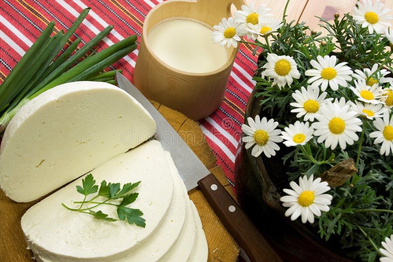 Slice of Traditional Slovak Sheep's Milk Cheese stock photography
