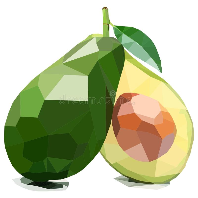 Sliced Avocado, Illustration of Fruit. Polygonal Art. Can be Used for reference learning for students toddlers stock illustration