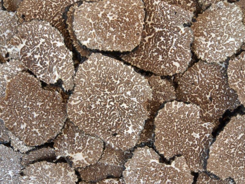 Sliced black truffles. (tuber aestivum royalty free stock photo