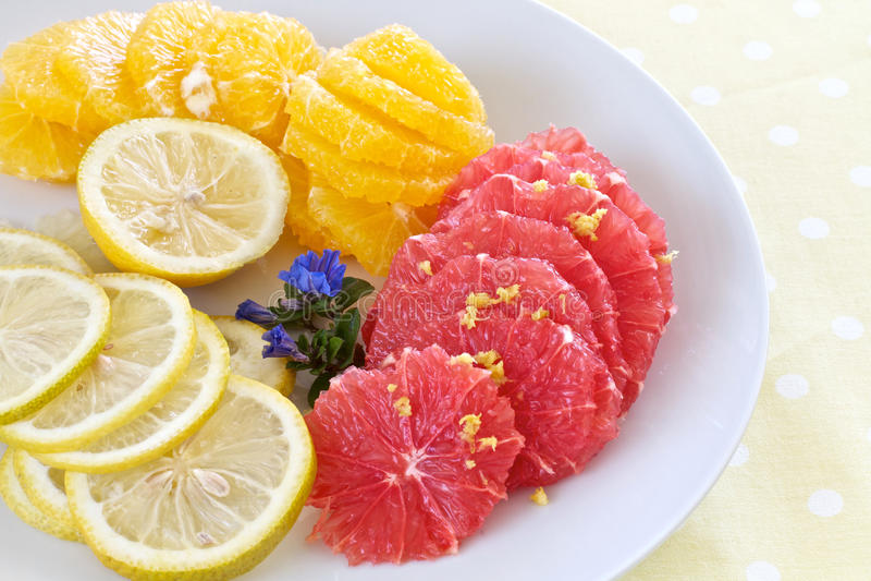Download Sliced citrus fruit stock photo. Image of fruit, orange - 25640720
