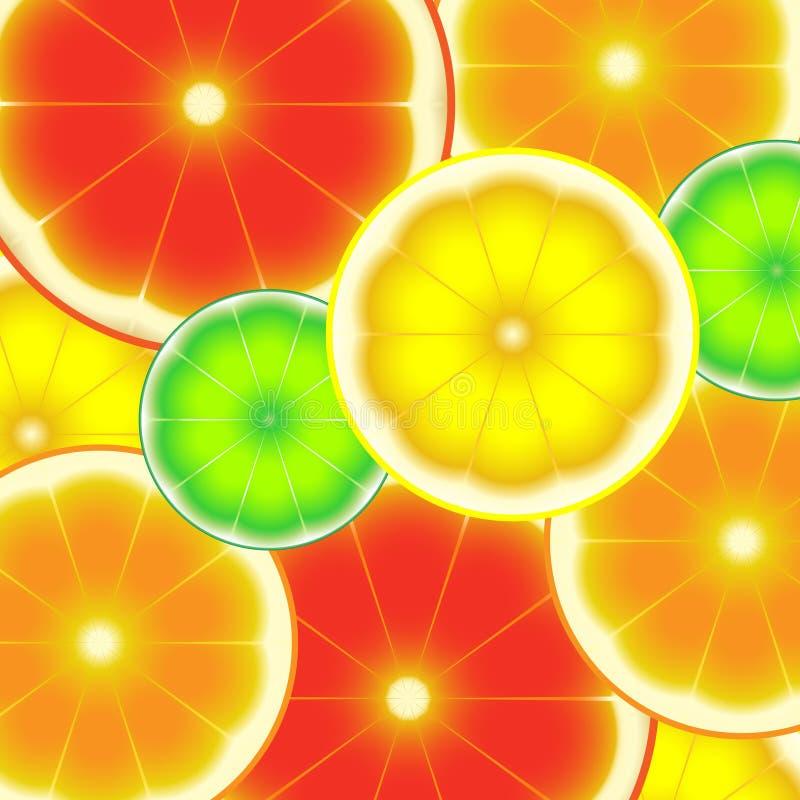 Sliced citrus fruits colorful bright background stock illustration