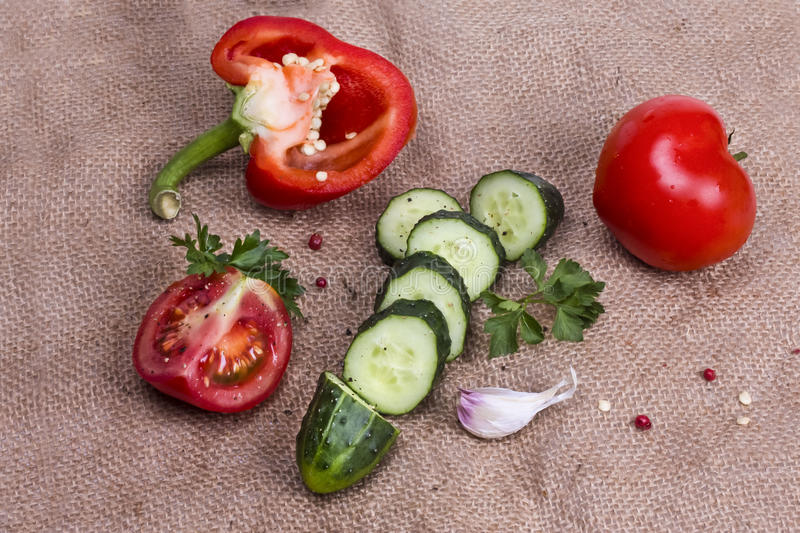 Sliced cucumber and red pepper with tomato and spices royalty free stock photos