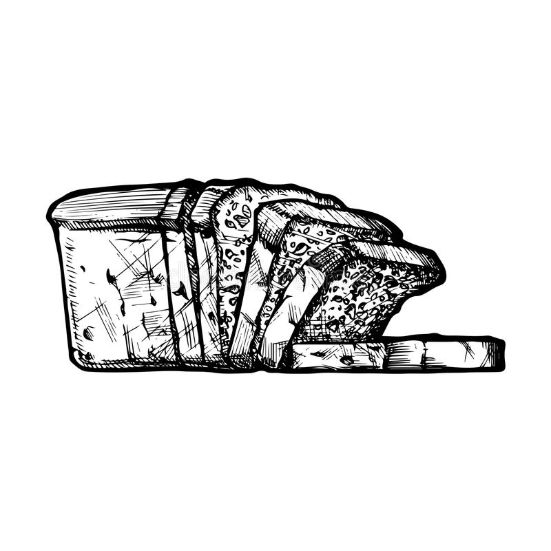 Sliced fresh bread. Hand drawn Illustration of sliced fresh bread, pan loaf in vintage engraved style. isolated on white stock illustration