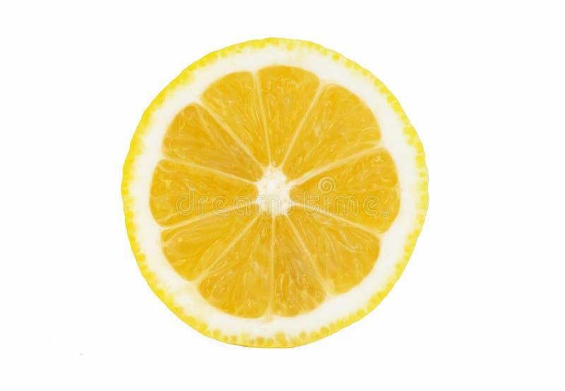 Sliced Fresh lemon white background stock photography