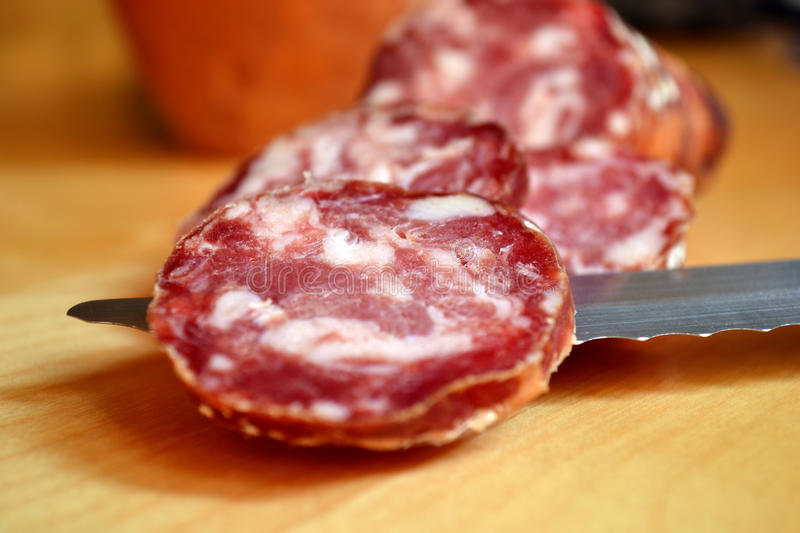 Download Sliced Italian Salami stock photo. Image of meat, beef - 22366176