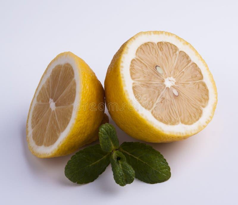 Sliced lemon with mint stock photos