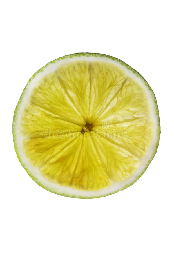 Sliced lime. Backlit showing intricate detail of structure royalty free stock photos