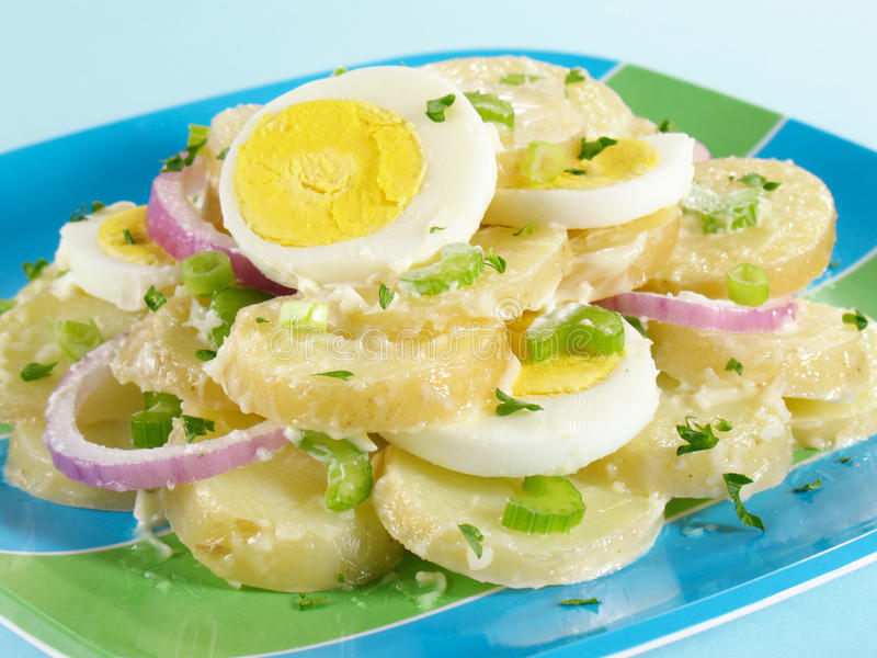 Download Sliced Potato Salad stock photo. Image of hard, onions - 10196118