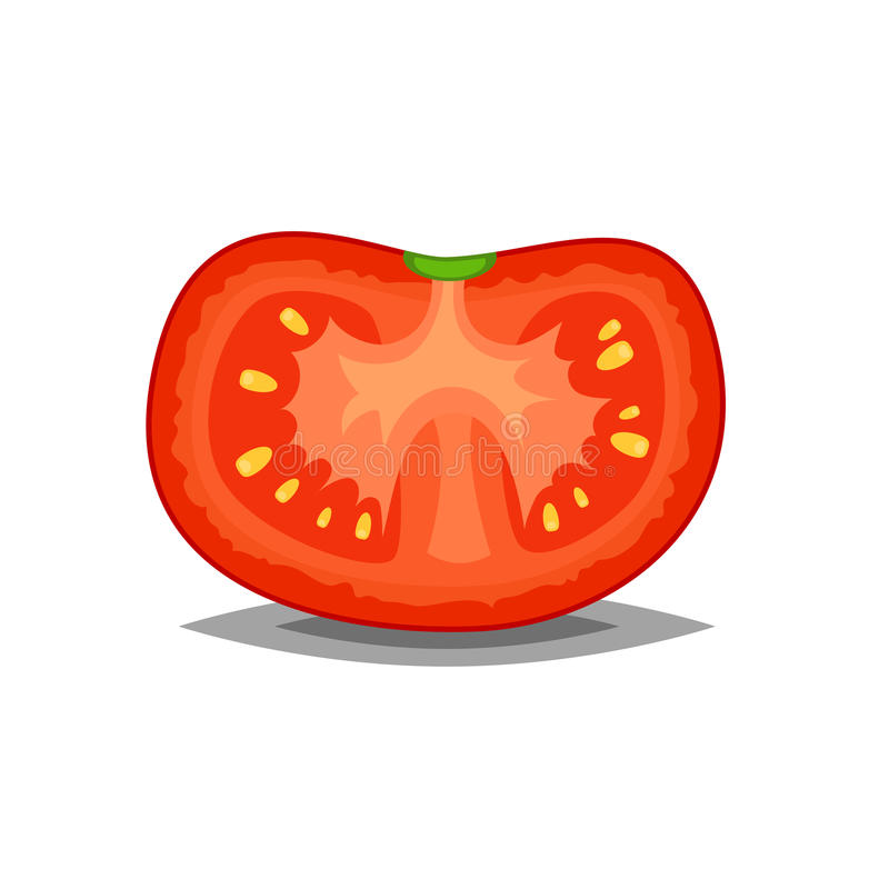 Sliced red and fresh tomato vector icon isolated on white for food illustration or art in flat style vector illustration