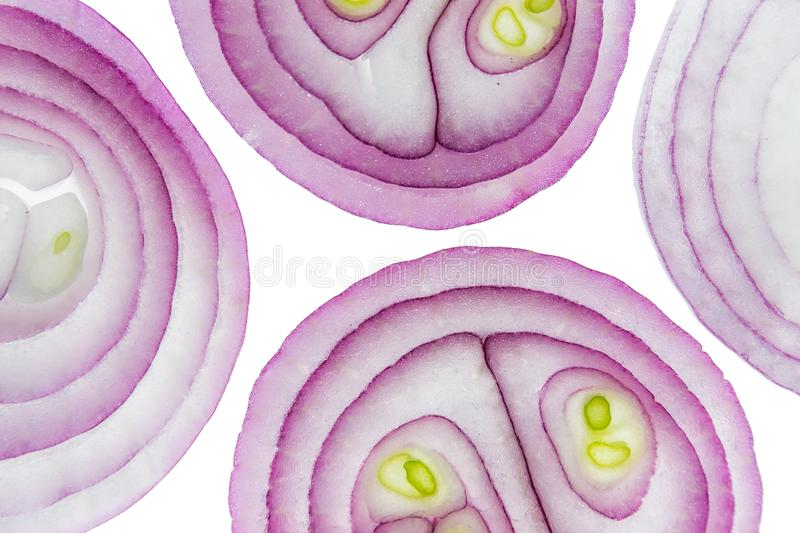 Sliced red onion rings on white background top view macro stock photography