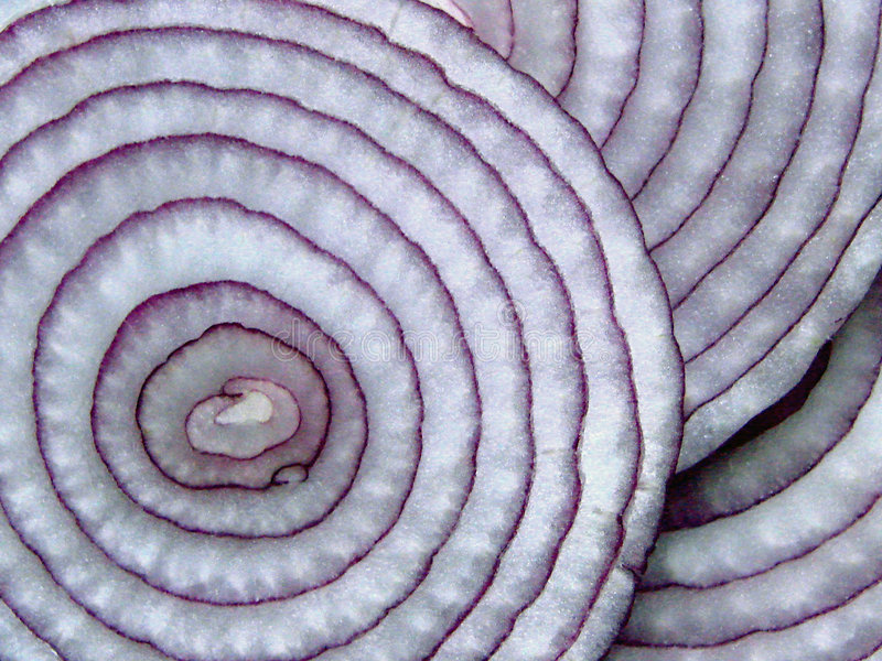 Sliced Red Onions royalty free stock image