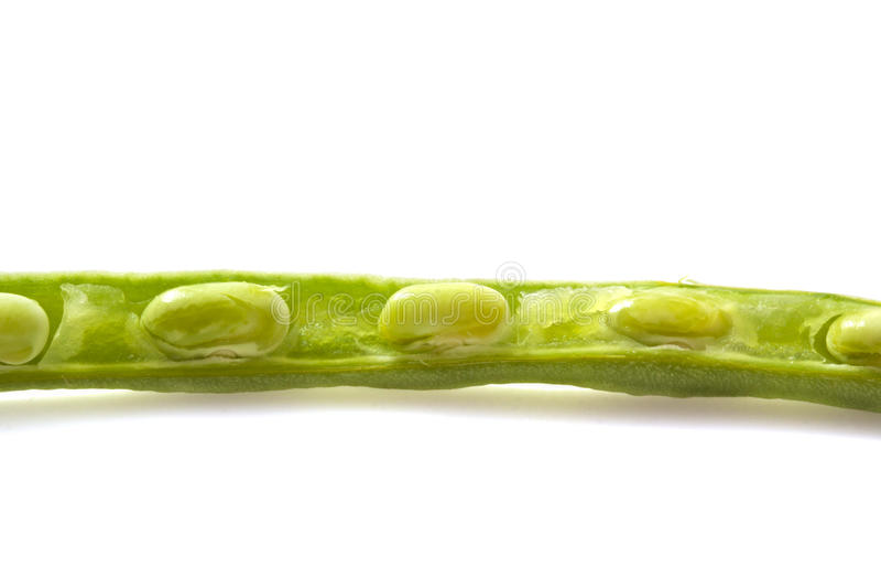 Download Sliced String Bean Stock Image - Image: 19964481