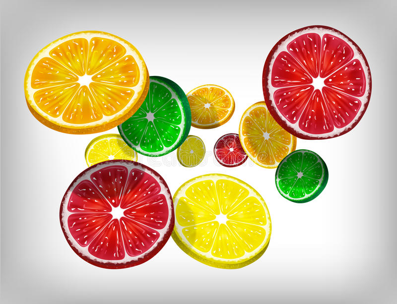 Slices of fresh citrus fruits, orange, lime, lemon and grapefruit falling and flying. Vector Illustration. Fresh citrus fruits flying on gray background vector illustration