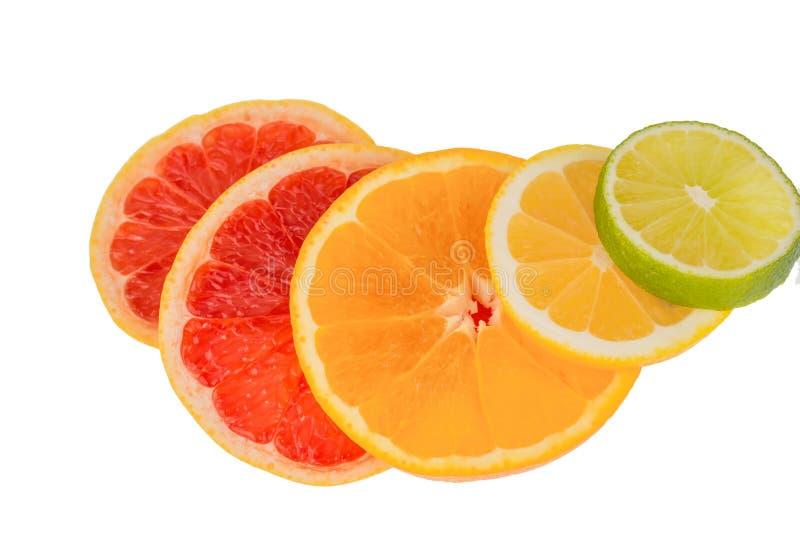 Download Orange slices stock photo. Image of organic, vital, ecologically - 29951538