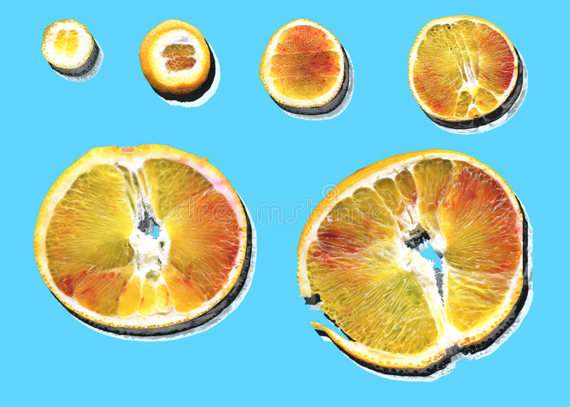 Slices of orange with shadow decomposed. royalty free stock photos