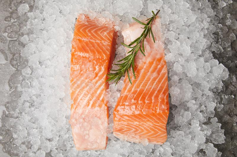 slices of red fish with rosemary branch on crushed ice royalty free stock images
