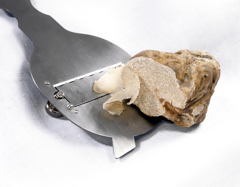 Slicing a white truffle stock images