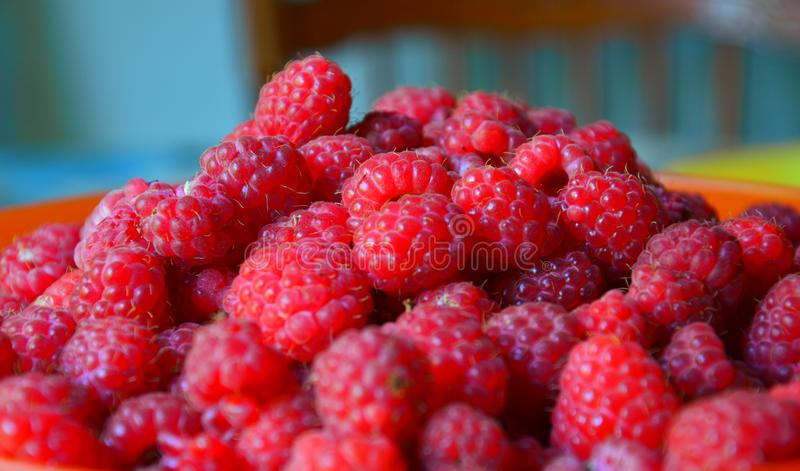 Slide of ripe delicious raspberry. Harvested crop. Summer brought its gifts. royalty free stock photos