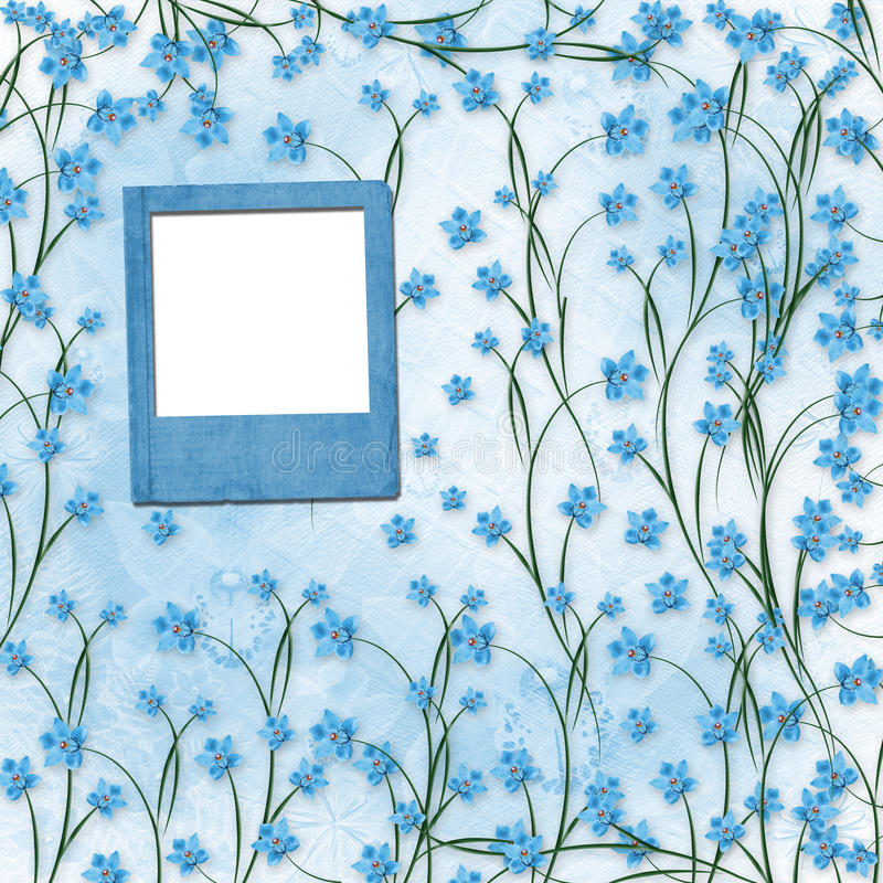 Download Slides For Photos With Blue Orchids Royalty Free Stock Images - Image: 21881889