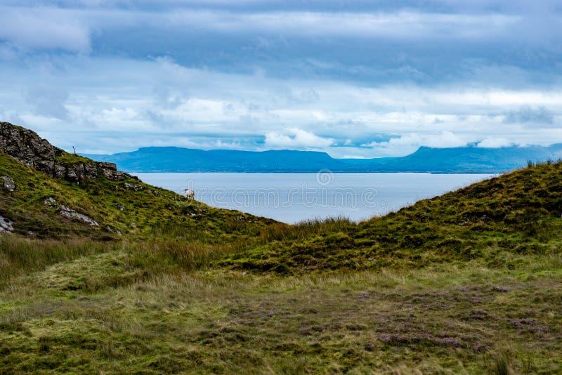 Slieve-Liga-Klippen, Grafschaft Donegal, Irland lizenzfreie stockfotos