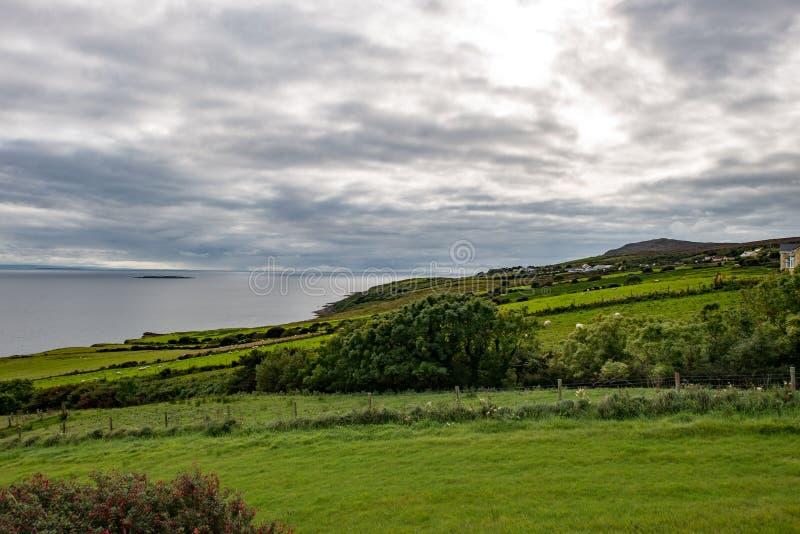 Slieve-Liga-Klippen, Grafschaft Donegal, Irland lizenzfreie stockbilder