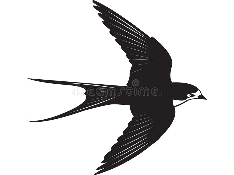 Slik vector illustratie