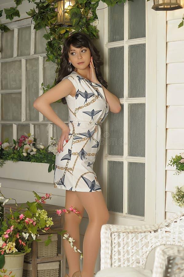 Slim brunette girl royalty free stock image