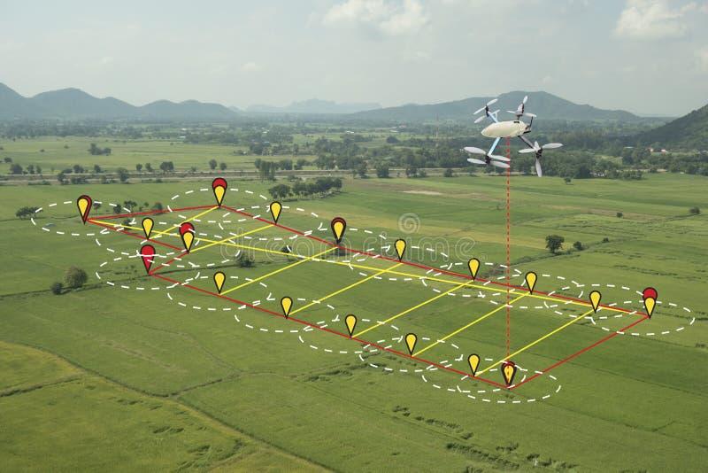 Slim de landbouwconcept, hommelgebruik een technologie in landbouwverstand stock afbeelding