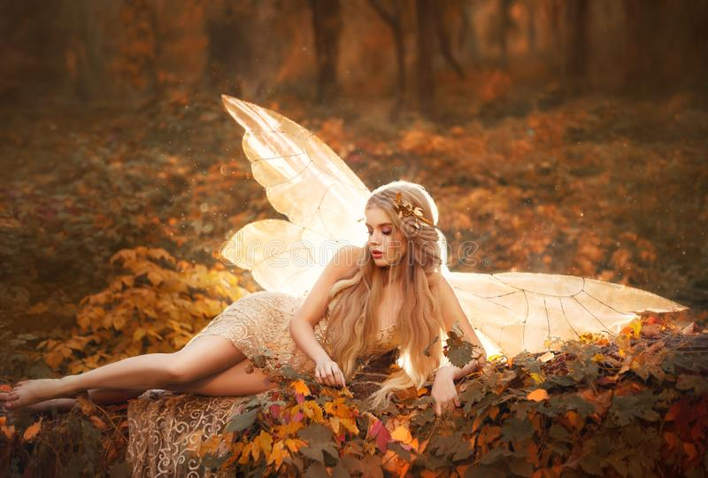 Slim girl became a fairy, a model with blond long hair and golden wreath on leaves in the forest in a beige long dress royalty free stock image