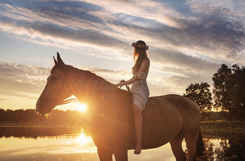 Slim lady sitting on a horse and looking at the sunset royalty free stock image