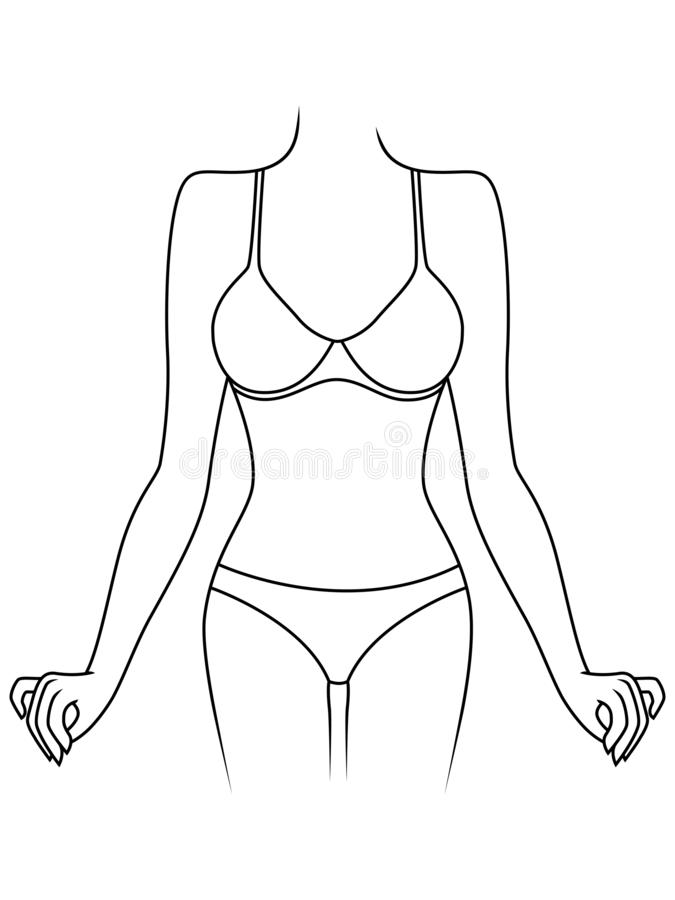Slim lady in underwear. Slender graceful woman in underwear isolated on the white background, hand drawing vector outline stock illustration