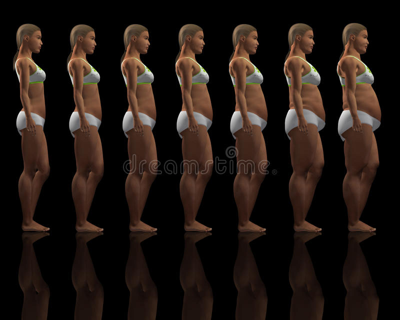 Download Slim to overweight female stock illustration. Illustration of dieting - 19097076