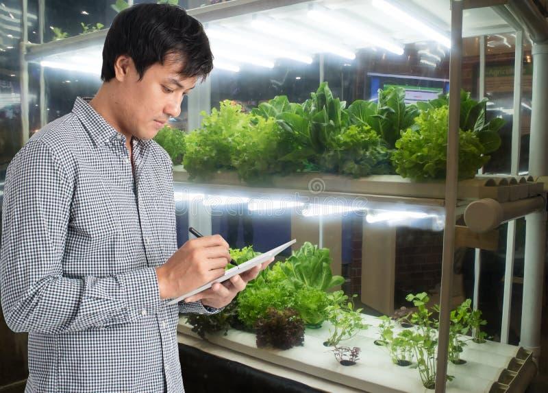Slimme landbouw in futuristisch concept, de technologie t van het landbouwersgebruik stock foto's