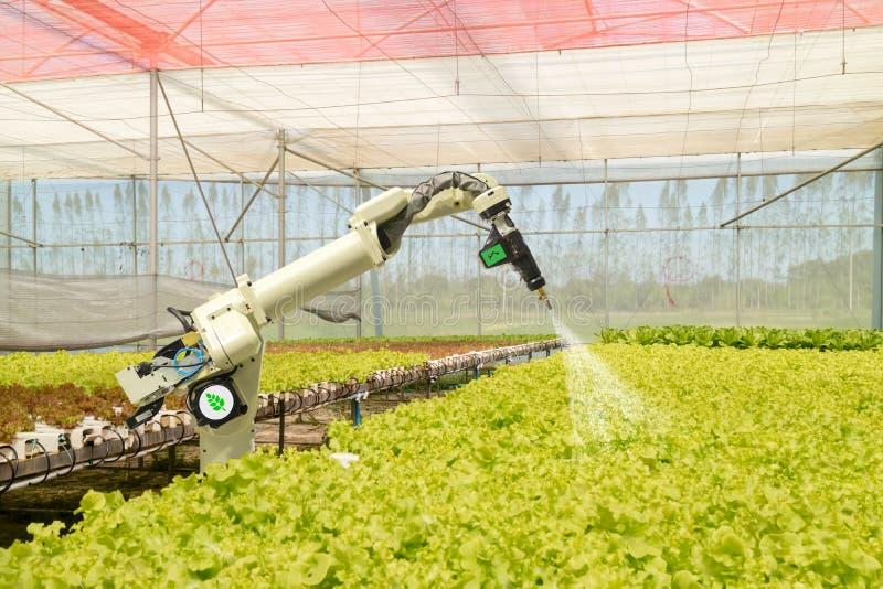 Slimme robotachtig in landbouw futuristisch concept, de automatisering van robotlandbouwers moet worden geprogrammeerd om aan nev royalty-vrije stock fotografie