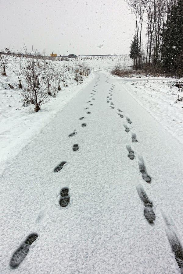 Slinga i snö royaltyfri fotografi