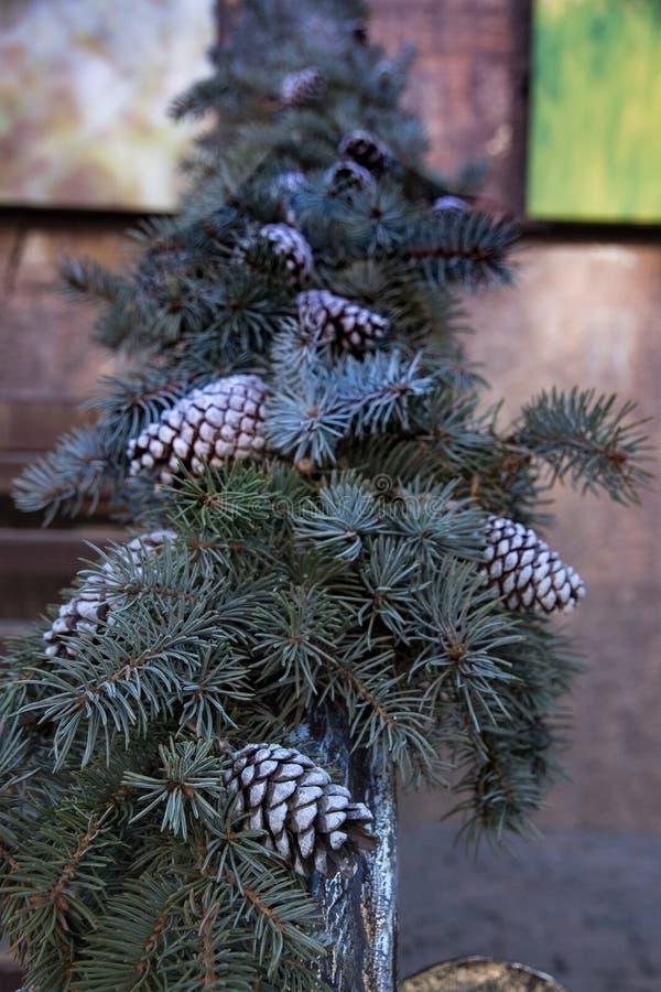 Slinger van spartakken en kegels voor het Nieuwjaar en Kerstmis stock foto