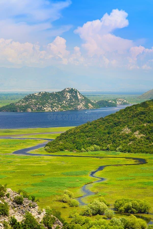 Slingra den Rijeka Crnojevica floden i Skadar sjönationalpark, royaltyfria foton