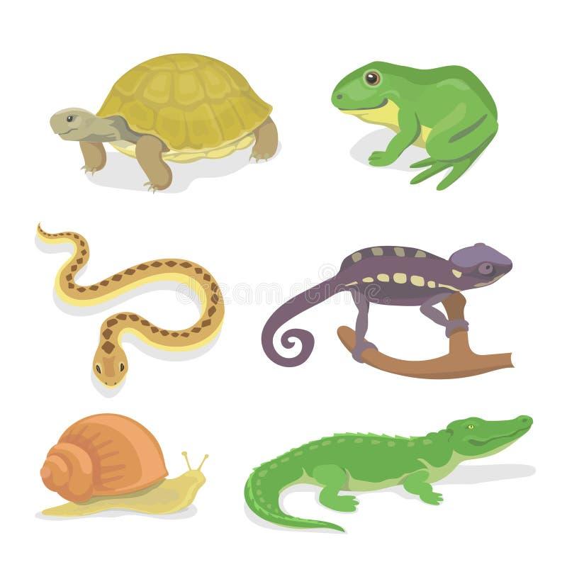 Slingrar den dekorativa uppsättningen för reptilar och för amfibier av krokodilsköldpaddan kameleonten stock illustrationer