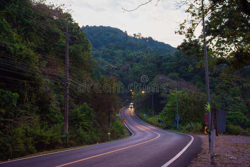 Slingrig väg för morgon med det gula bandet i rainforestdjungler det gryningen arkivfoton