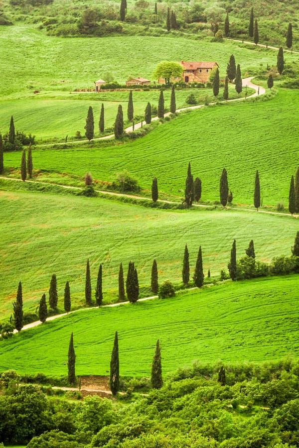 Slingrig väg till agritourism i Italien på kullen, Tuscany arkivfoto