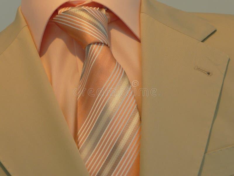 slipsskjortadräkt royaltyfria foton