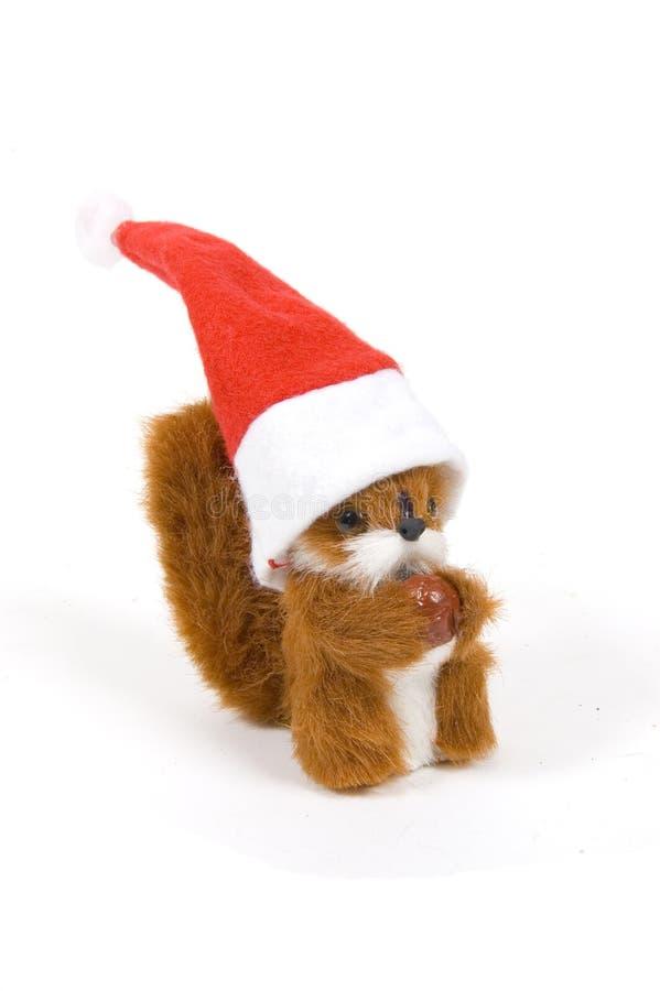 slitage för ekorre för gullig hatt för jul plushy fotografering för bildbyråer