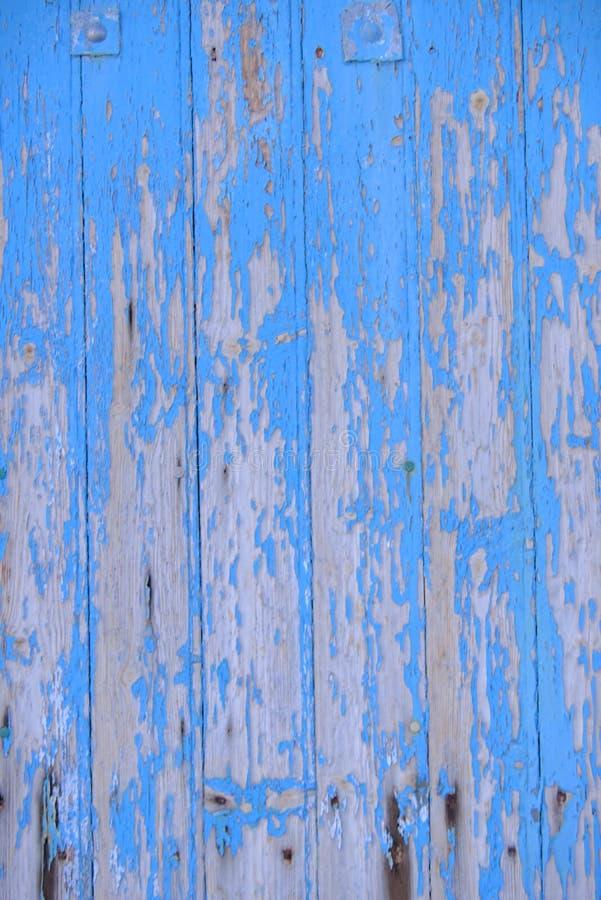 Sliten blå trädörr med skalningsmålarfärg royaltyfria foton