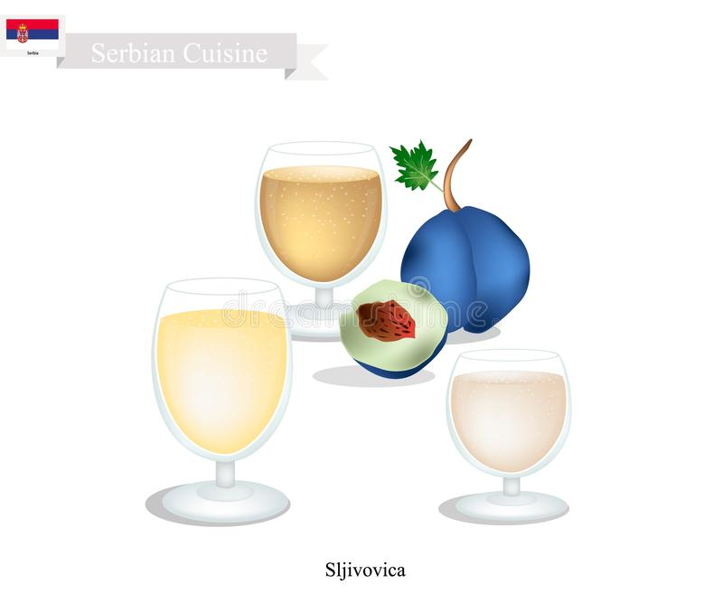 Sljivovica of Plum Brandy, Populaire Drank in Servië vector illustratie