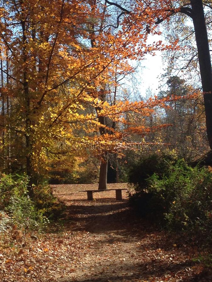Sloan Park en el NC fotografía de archivo libre de regalías