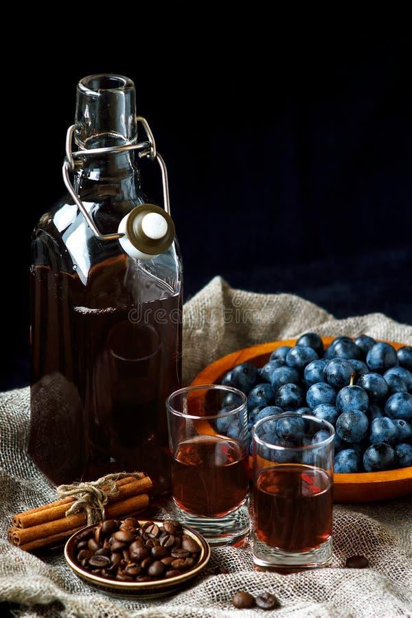 Sloe τζιν Γυαλί blackthorn του σπιτικού ελαφριού γλυκού καφεκόκκινου υγρού Sloe-αρωματικό ηδύποτο ή κρασί στοκ εικόνες με δικαίωμα ελεύθερης χρήσης